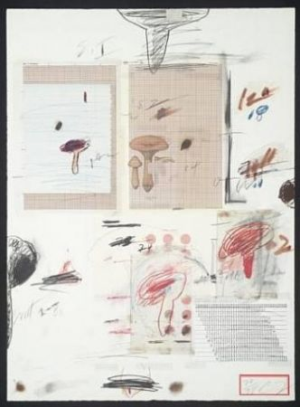 Litografia Twombly - Natural History Part I: Mushrooms Iv