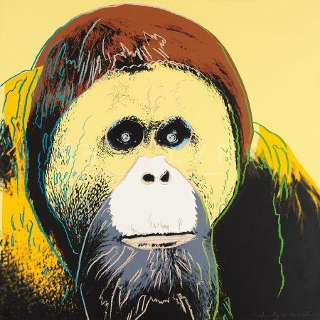 Serigrafia Warhol - Orangutan (Fs Ii.299)