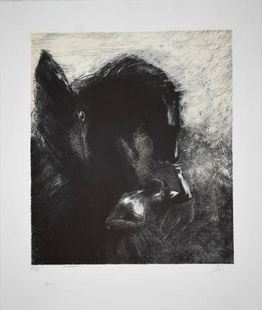 Litografia Redon - Pégase Captif / Captive Pegasus 1889