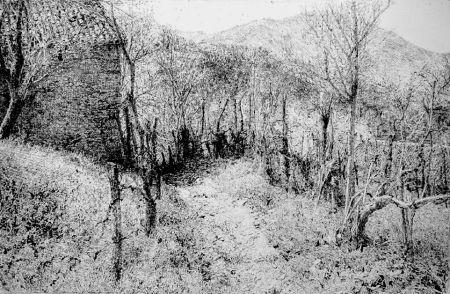 Acquaforte Barbisan - Paesaggio in collina