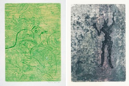 Acquaforte E Acquatinta Ernst - PAROLES PEINTES (1959) 2 GRAVURES ORIGINALES DE MAX ERNST (10 gravures originales de Max Ernst, Jacques Hérold, Wifredo Lam, Sébastian Matta et DorotheaTanning. Poèmes d'Alain Bosquet).