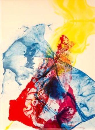 Litografia Jenkins - Phenomena: Katherine Wheel