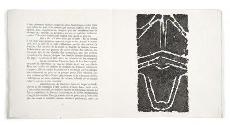 Libro Illustrato Ubac - Pierres réfléchies