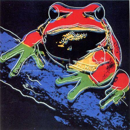 Serigrafia Warhol - Pine Barrens Tree Frog (Fs Ii.294)
