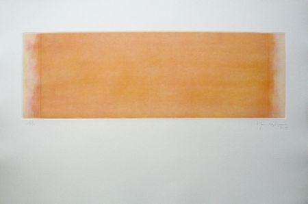 Incisione Hernandez Pijuan - Polychrome 14