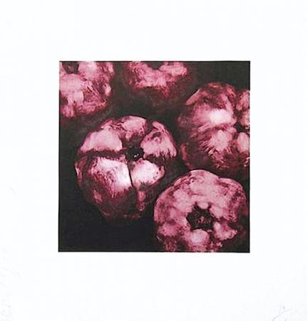 Serigrafia Sultan - Pomegranates