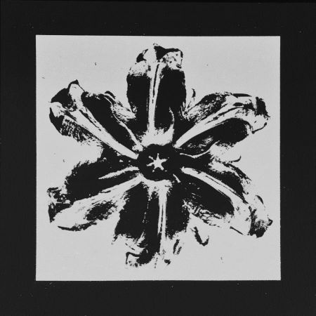 Serigrafia Robierb - Power Flower (Black)