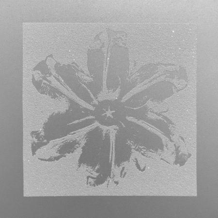 Serigrafia Robierb - Power Flower (Silver)