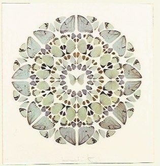 Serigrafia Hirst - Psalm Print, Exaudi, Domine (Diamond dust)
