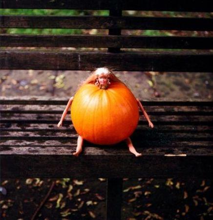 Fotografie Shrigley - Pumpkin