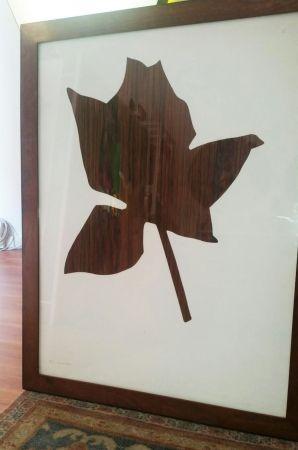 Multiplo Kounellis - Rosa