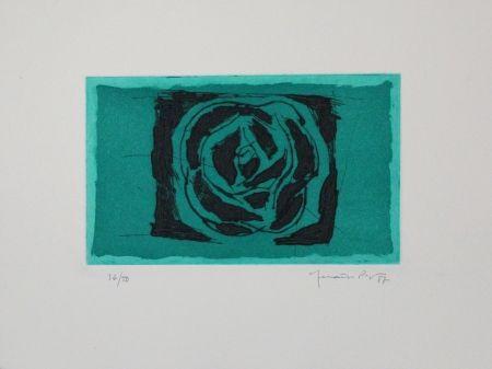 Acquaforte E Acquatinta Hernandez Pijuan - Rosa Verda / Green Rose