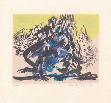 Litografia Boumeester - Sans titre [Montagne]