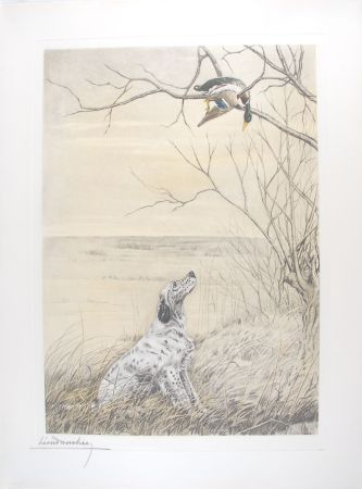 Incisione Danchin - Setter et Canard branche - English Setter and Duck in a tree (Original)