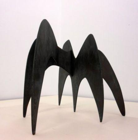 Non Tecnico Calder - Sin titulo