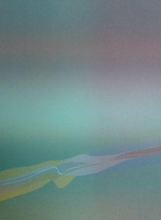 Litografia Bird - Spectre lumière 4