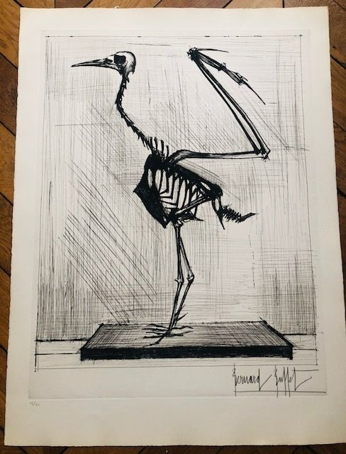 Incisione Buffet - Squelette d'oiseau