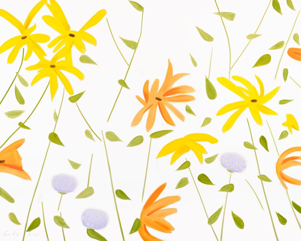 Non Tecnico Katz - Summer Flowers 2