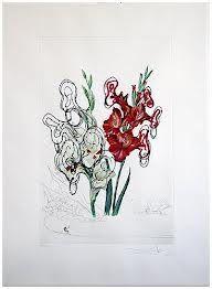 Punta Secca Dali - Surrealistic Flowers, 541, Gladiolus cum aurium corymbo expectantium