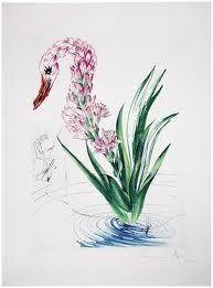 Punta Secca Dali - Surrealistic Flowers, 542, Polyanthes tyberosa et cygnus vegetalis