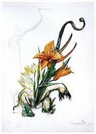 Punta Secca Dali - Surrealistic Flowers, 545, Hemerocallis thumbergii elephanter furiosa