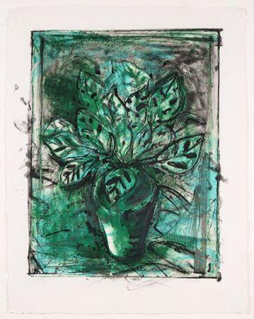 Litografia Dine - The Jerusalem Plant, No 8