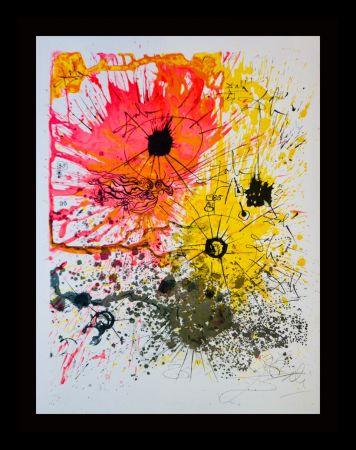 Litografia Dali - The Lucky Number of Dali