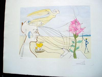 Incisione Dali - The Rose