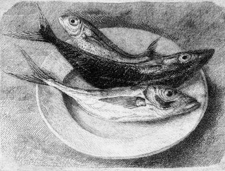 Acquaforte Mongatti - Tre pesci dell'Adriatico