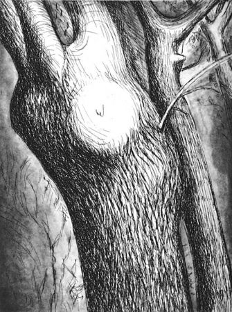 Acquaforte E Acquatinta Moore - Trees VI dead ash