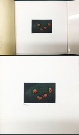 Maniera Nera Hamaguchi - Two Pairs (Ladybirds). signed. with the original book (1976)
