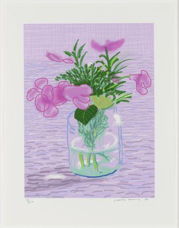 Non Tecnico Hockney - Untitled