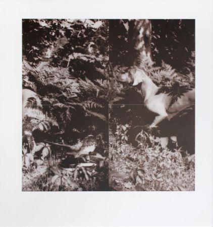 Litografia Wegman - Untitled