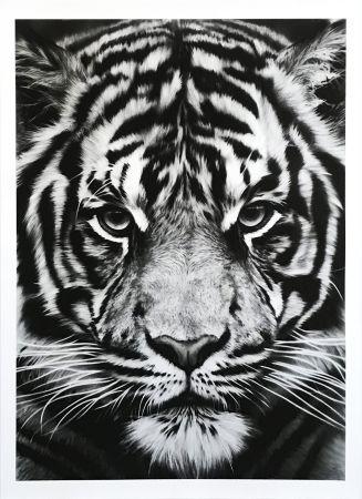 Serigrafia Longo - Untitled (Tiger)