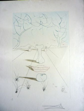 Incisione Dali - Visage Surrealiste From