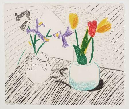 Litografia Hockney - White Porcelain, From Moving Focus