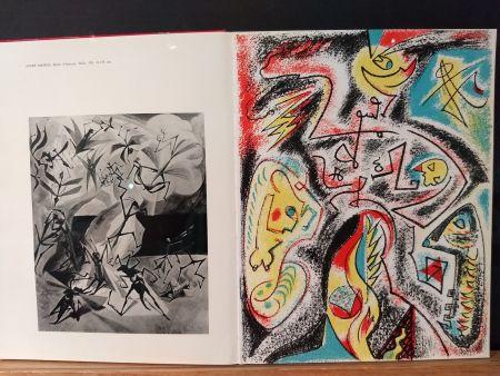 Libro Illustrato Masson - Xxe No 32