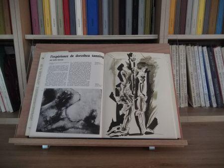 Libro Illustrato Masson - Xxe Tanning