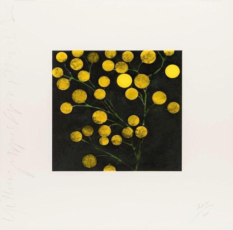Litografia Sultan - Yellow Peppers