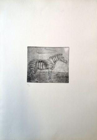 Punta Secca Ligabue - Zebra